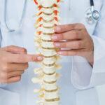 Fisio Point - Fisioterapia a Roma, Riabilitazione, Poliambulatorio, Medical Fitness, Colonna vertebrale, Riabilitazione della Colonna, Ortopedico