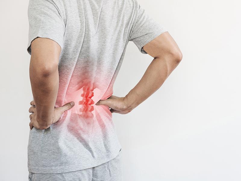 Fisio Point - Fisioterapia a Roma, Riabilitazione, Poliambulatorio, Medical Fitness, Riabilitazione Mal di schiena